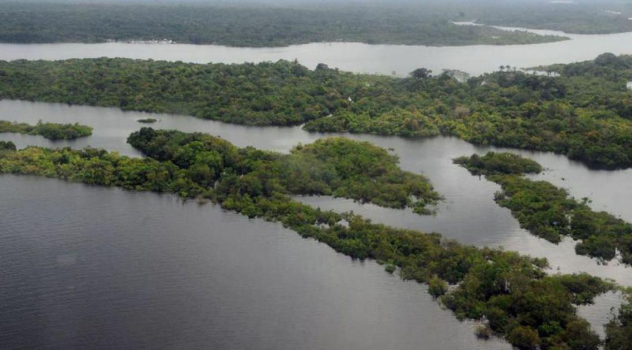 Missão diplomática faz visita à Amazônia Ocidental