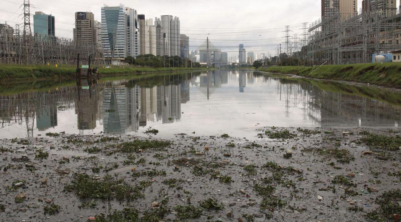 SP: máquina para capturar pernilongos está em testes no Rio Pinheiros